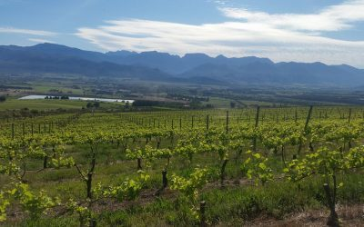 Boschendal – World Top Ten