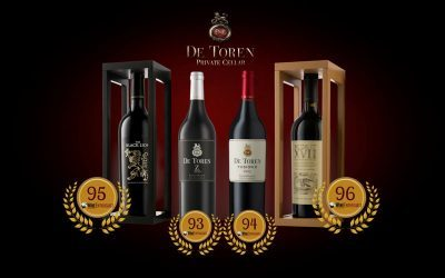 De Toren: The Highest Rated SA Wine by Wine Enthusiast