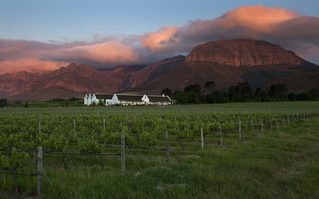 Avondale Estate Reveals The Value In Taking It Slow