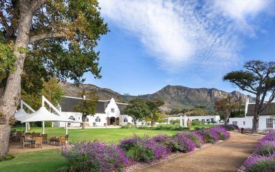 Idyllic Steenberg Hotel & Spa in full bloom after an extensive upgrade